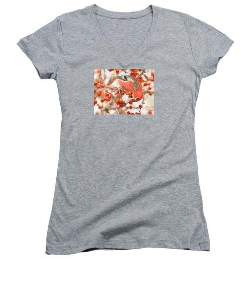 Pine Grosbeak Women's V-Neck T-Shirt