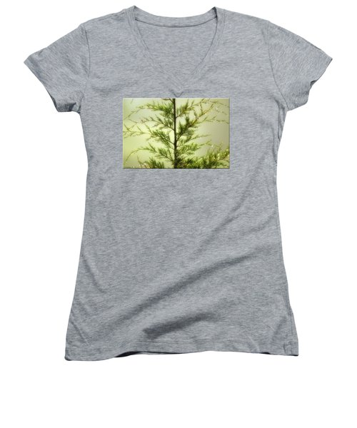 Women's V-Neck T-Shirt (Junior Cut) featuring the photograph Pine Shower by Brian Wallace