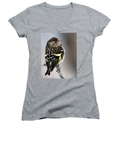 Pine Siskin Women's V-Neck T-Shirt (Junior Cut) by Larry Ricker