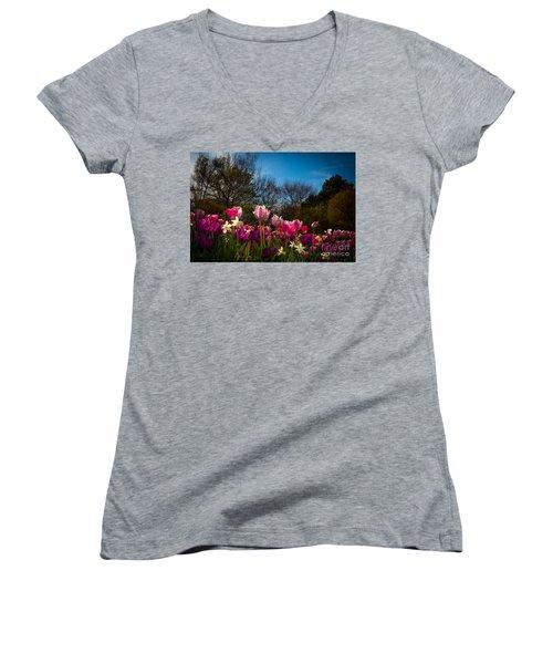 Pink And Purple Tulips Women's V-Neck T-Shirt (Junior Cut) by John Roberts