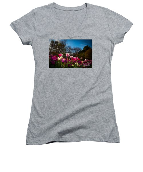 Pink And Purple Tulips Women's V-Neck T-Shirt