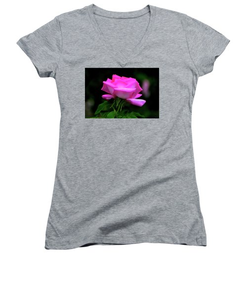 Women's V-Neck T-Shirt (Junior Cut) featuring the photograph Pink And White Rose 005 by George Bostian