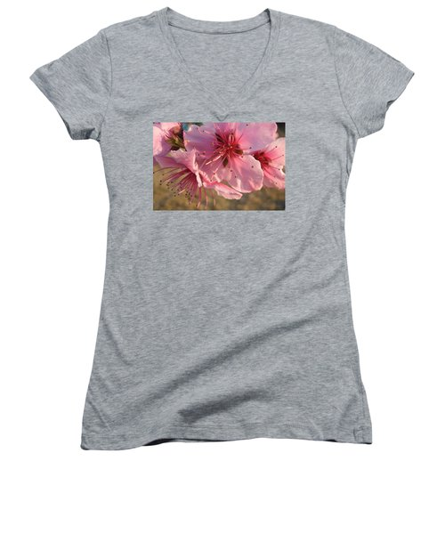 Pink Blossoms Women's V-Neck T-Shirt (Junior Cut) by Barbara Yearty