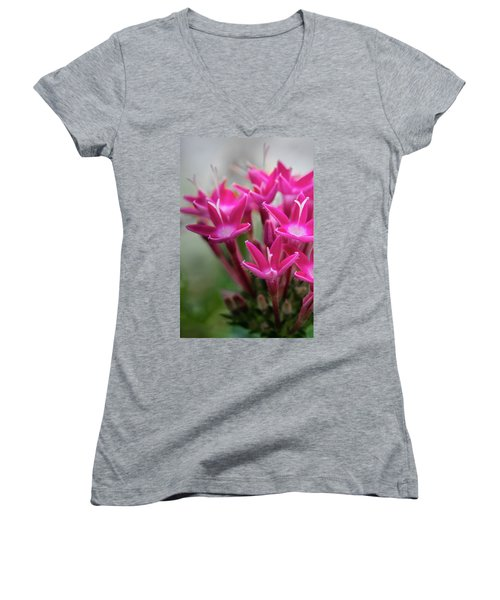Pink Blossoms Women's V-Neck