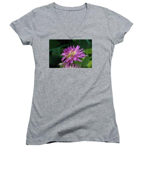 Pink Dahlia Women's V-Neck T-Shirt (Junior Cut) by Glenn Franco Simmons