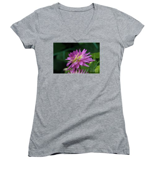 Pink Dahlia Women's V-Neck T-Shirt