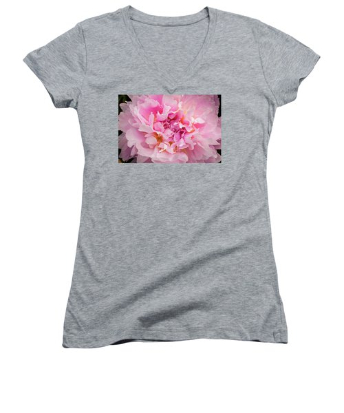 Pink Double Peony Women's V-Neck (Athletic Fit)