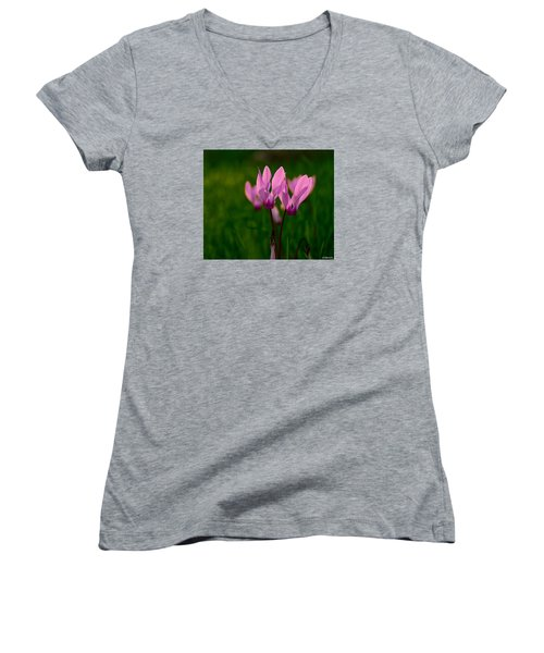 Women's V-Neck T-Shirt (Junior Cut) featuring the photograph Pink Light by Uri Baruch