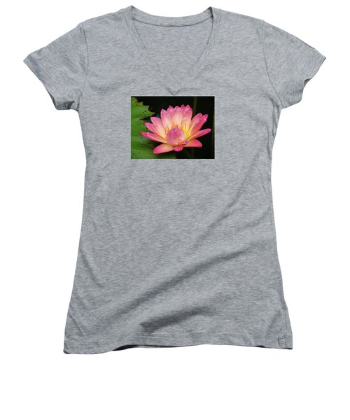 Pink Lily 1 Women's V-Neck (Athletic Fit)