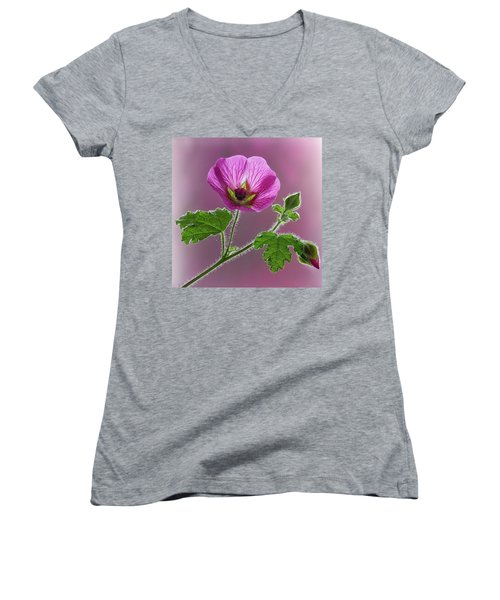 Pink Mallow Flower Women's V-Neck (Athletic Fit)