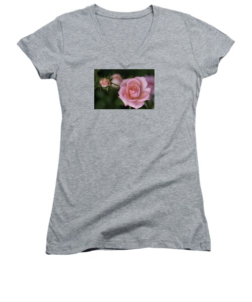 Pink Miniature Roses 3 Women's V-Neck (Athletic Fit)