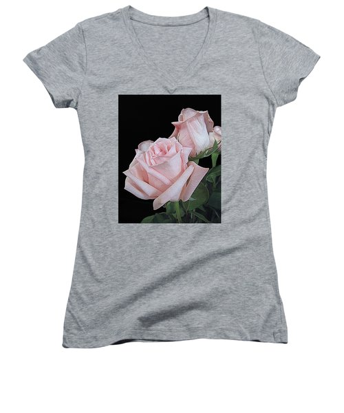 Pink Persuasion Women's V-Neck T-Shirt