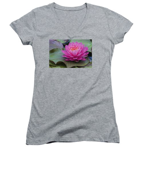 Pink Surprise Women's V-Neck T-Shirt