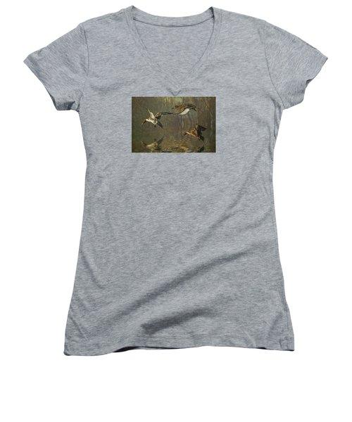 Pintail Ducks Women's V-Neck T-Shirt (Junior Cut) by Brian Tarr