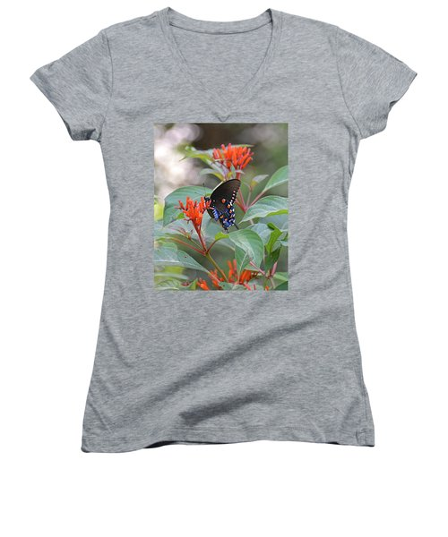 Pipevine Swallowtail Butterfly On Firebush Women's V-Neck (Athletic Fit)