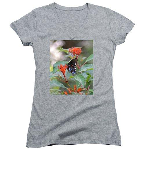 Pipevine Swallowtail Butterfly On Firebush Women's V-Neck T-Shirt