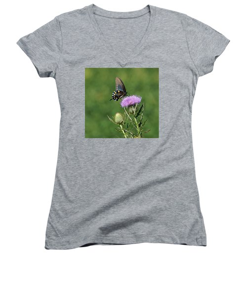 Women's V-Neck T-Shirt (Junior Cut) featuring the photograph Pipevine Swallowtail by Sandy Keeton