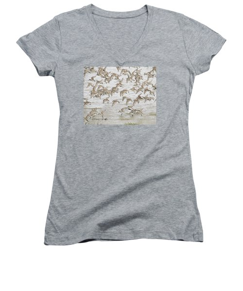 Piping In Spring Women's V-Neck T-Shirt (Junior Cut) by I'ina Van Lawick