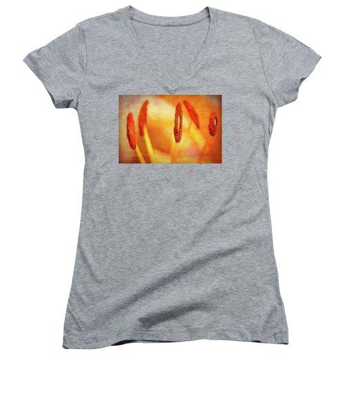 Pistil Packen Women's V-Neck T-Shirt