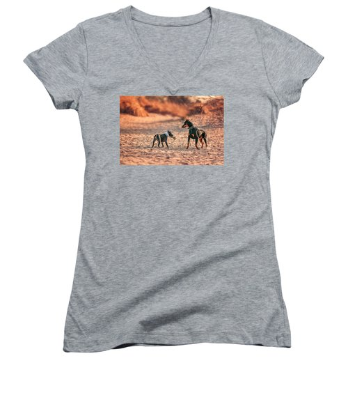 Women's V-Neck T-Shirt featuring the photograph Pitbull And Doberman by Peter Lakomy