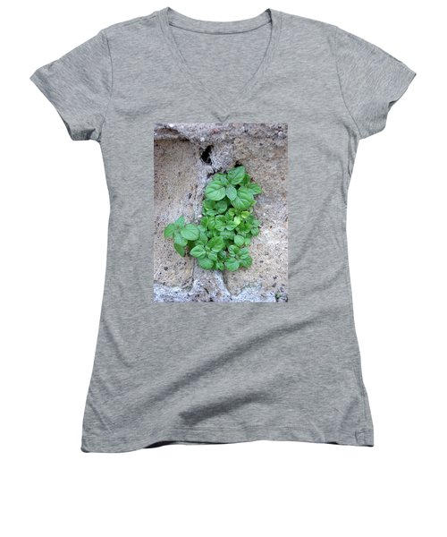 Plant In Stone Naples Italy Women's V-Neck (Athletic Fit)