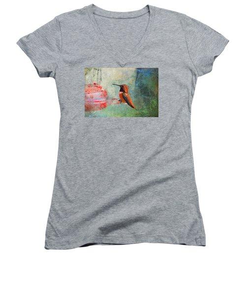 Plate 048 - Hummingbird Grunge Series Women's V-Neck T-Shirt