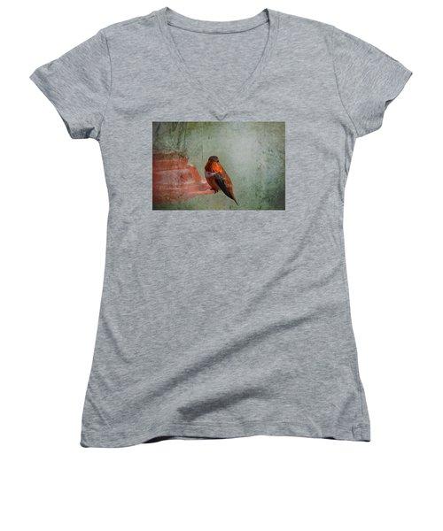Plate 164 - Hummingbird Grunge Series Women's V-Neck T-Shirt