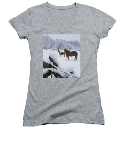 Playing In The Snow Women's V-Neck (Athletic Fit)