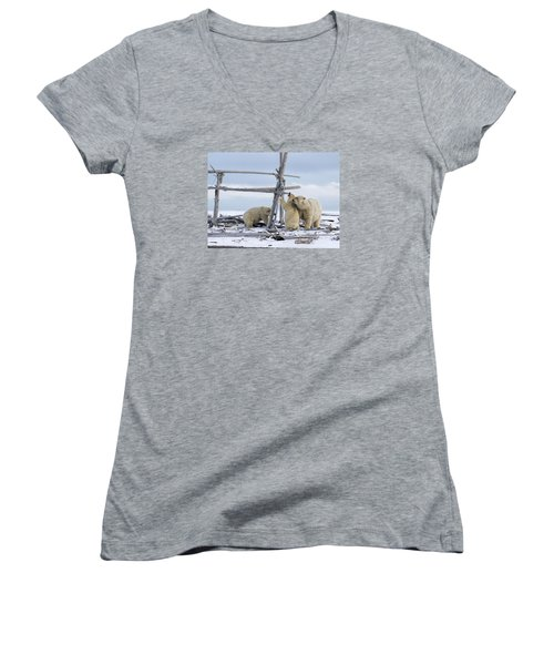 Playtime In The Arctic Women's V-Neck (Athletic Fit)
