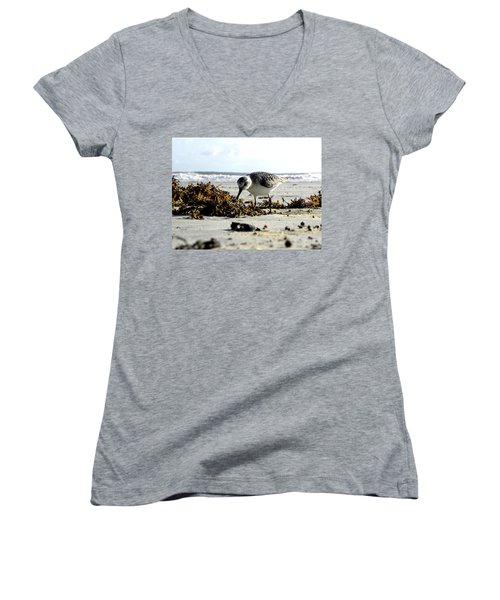 Plover On Daytona Beach Women's V-Neck T-Shirt