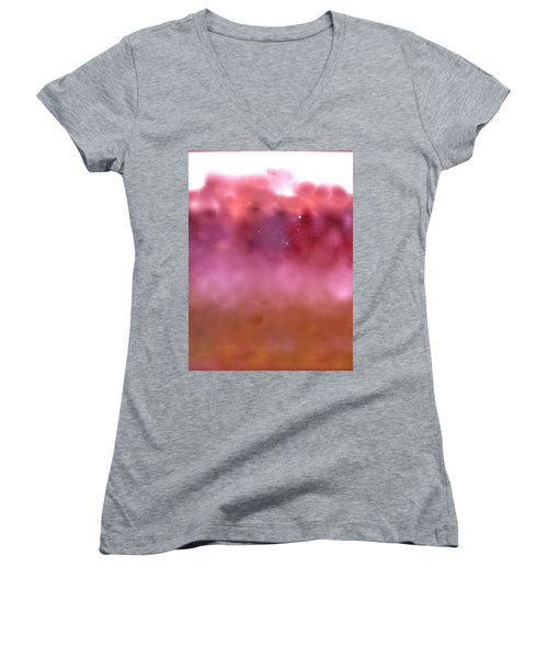 Plum Fairies Women's V-Neck T-Shirt (Junior Cut)