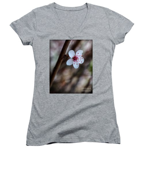 Plum Flower Women's V-Neck (Athletic Fit)