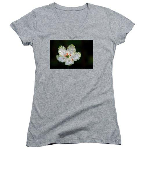Pocosin Manifest #2 Women's V-Neck T-Shirt