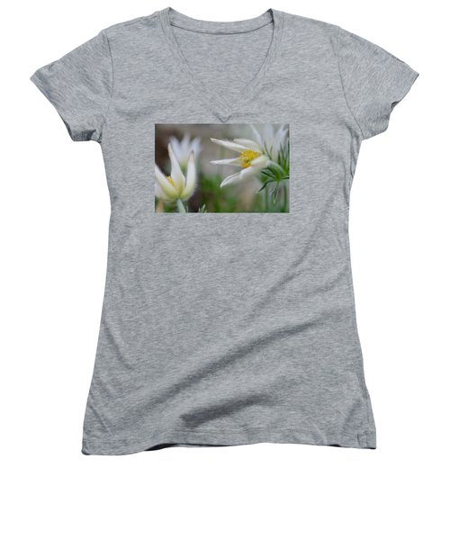 Points Women's V-Neck T-Shirt