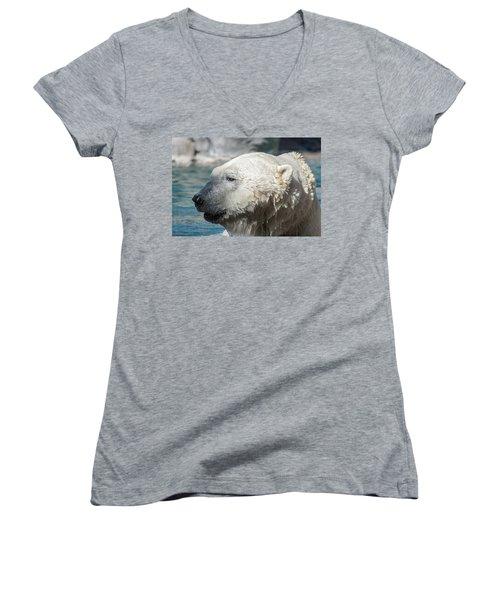 Polar Bear Club Women's V-Neck (Athletic Fit)