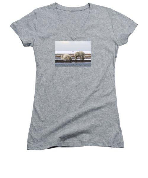 Polar Bear Zzzzzzz's Women's V-Neck T-Shirt (Junior Cut)