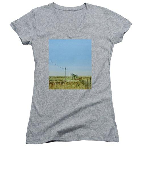 Poles Apart Women's V-Neck T-Shirt