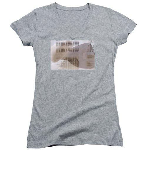 Pondering Women's V-Neck T-Shirt