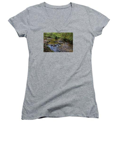 Pool At Cooper Creek Women's V-Neck T-Shirt