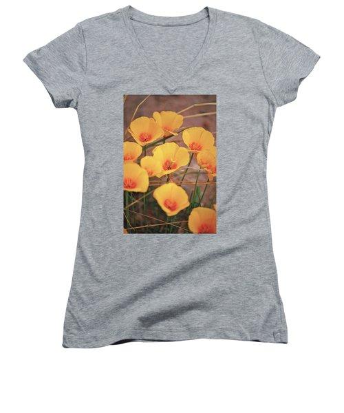 Poppies On Mount Lemmon Women's V-Neck