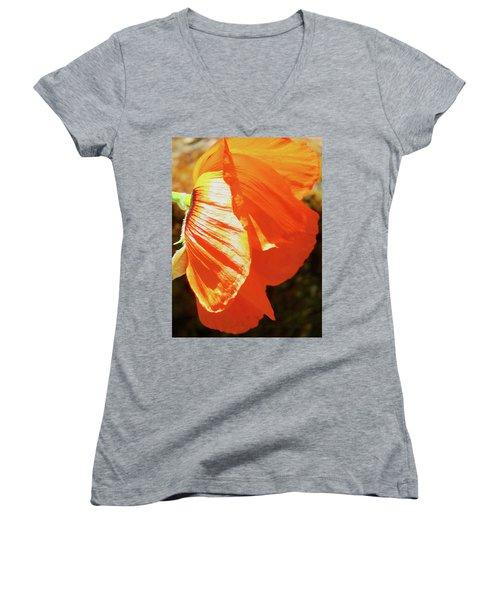 Poppy Profile - Beauty In The Garden Women's V-Neck T-Shirt (Junior Cut) by Brooks Garten Hauschild