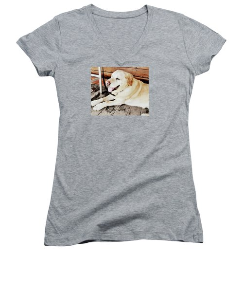 Porch Pooch Women's V-Neck T-Shirt (Junior Cut) by JAMART Photography