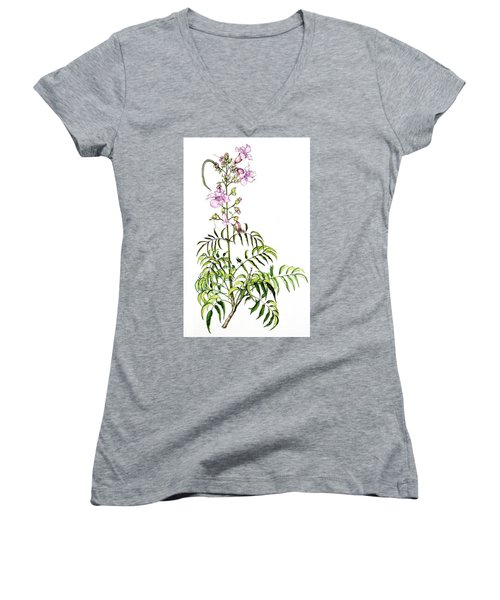Women's V-Neck T-Shirt (Junior Cut) featuring the painting Port St John's Creeper by Heidi Kriel