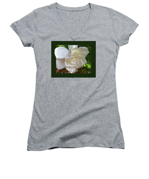 Women's V-Neck T-Shirt (Junior Cut) featuring the photograph Portrait Of A Gardenia by Ginny Schmidt