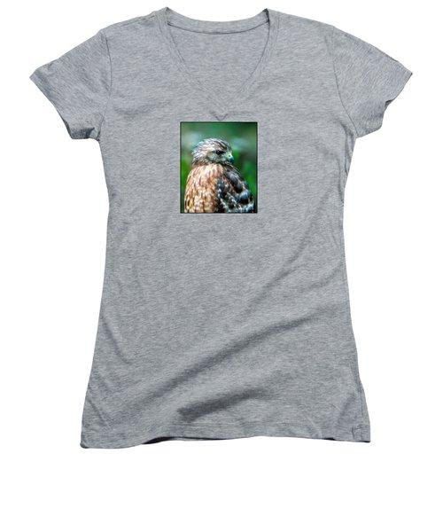 Portrait Of A Hawk Women's V-Neck T-Shirt