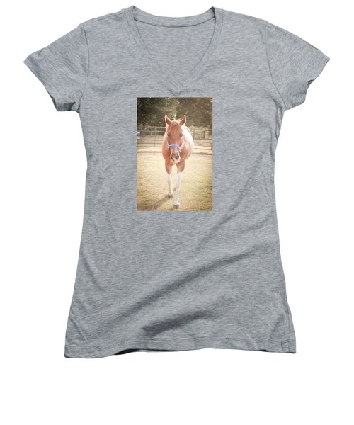 Portrait Of A Light Brown Horse In A Pasture Women's V-Neck T-Shirt (Junior Cut) by Kelly Hazel