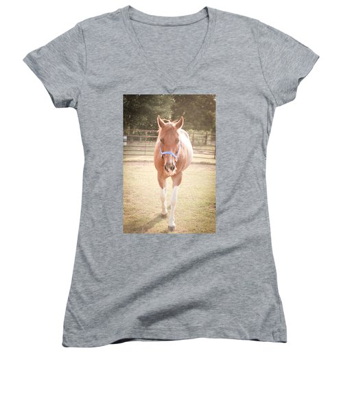 Portrait Of A Light Brown Horse In A Pasture Women's V-Neck