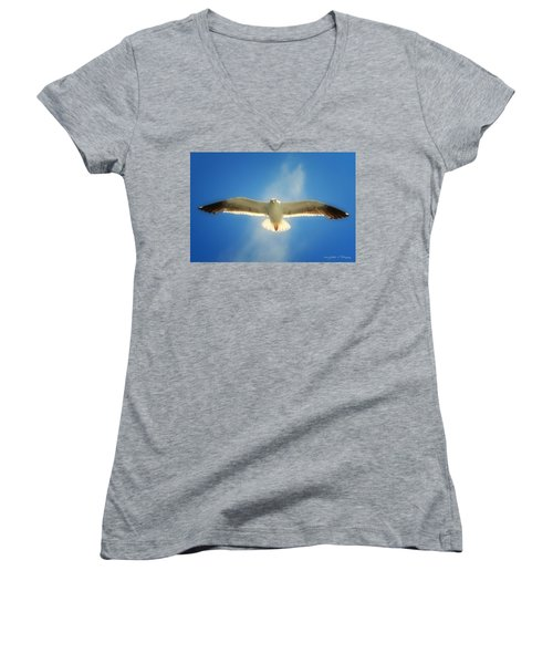 Women's V-Neck T-Shirt (Junior Cut) featuring the photograph Portrait Of A Seagull by John A Rodriguez