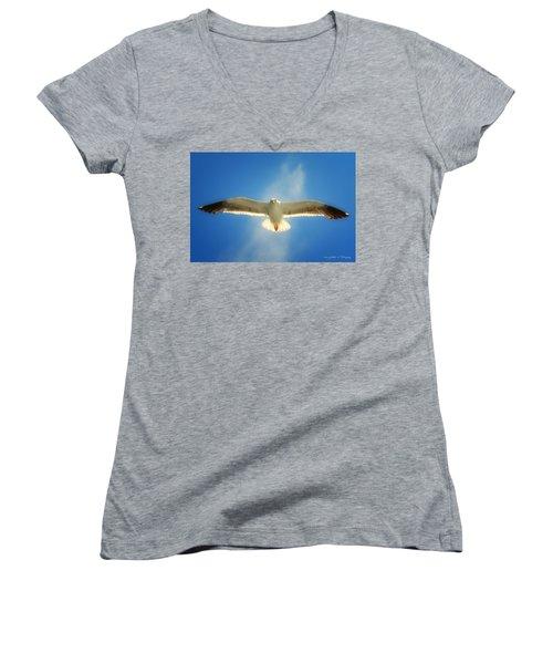 Portrait Of A Seagull Women's V-Neck T-Shirt