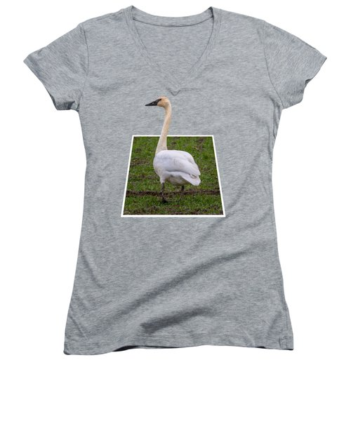 Portrait Of A Swan Out Of Frame Women's V-Neck T-Shirt